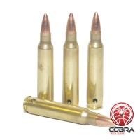 5.56x45mm NATO FMJ geneutraliseerde munitie