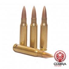 7,62×51mm NATO FMJ geneutraliseerde munitie